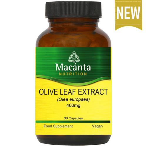 Macánta Olive Leaf Extract