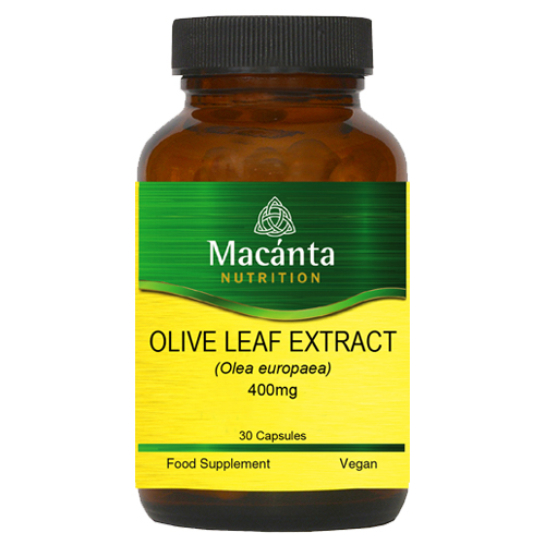 Olive Leaf Extract | Macánta Nutrition